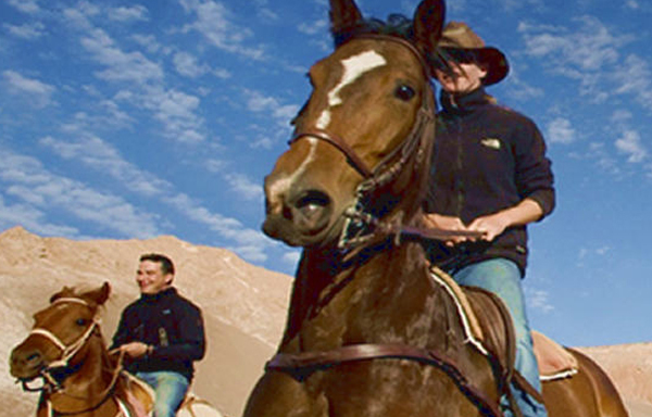 Explore the Sonoran Desert on Horseback!